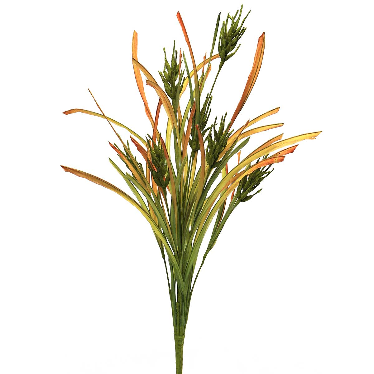"F1764 GR WILD WHEAT BUSH 24"" GREEN"